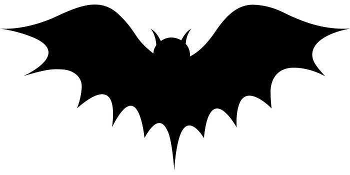 Dreams About Bats Interpretation And Meaning