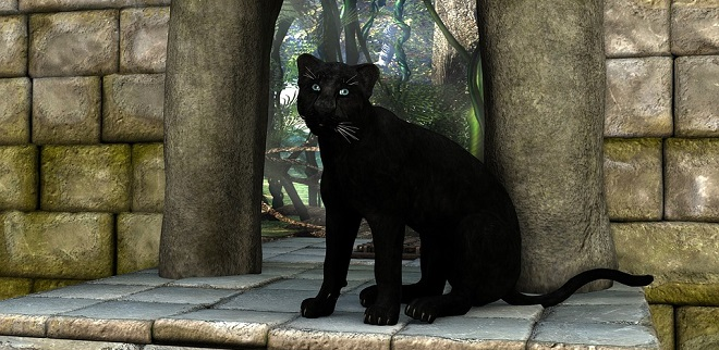 Black Panther Spirit Animal Symbolism And Meaning