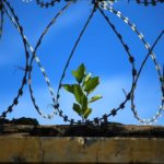 Dreams About Jail – Interpretation and Meaning