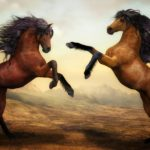 Biblical Meaning of Horses in Dreams – Interpretation and Meaning